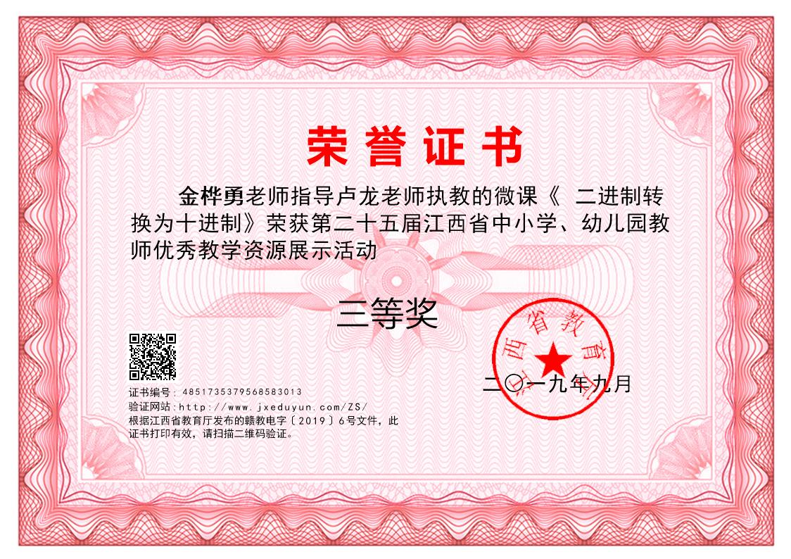 金桦勇老师的指导奖证书